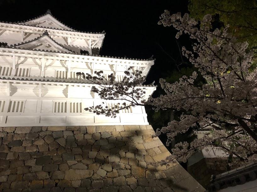 福山城 夜桜